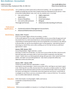 Accountant Cv Example Learnist Org