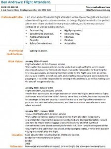 flight attendant cv example