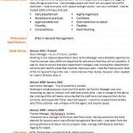 manager cv example and template