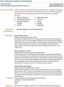 software developer cv example