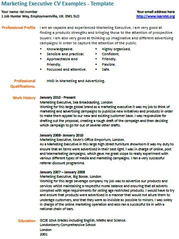 cv template for marketing job - marketing executive cv example
