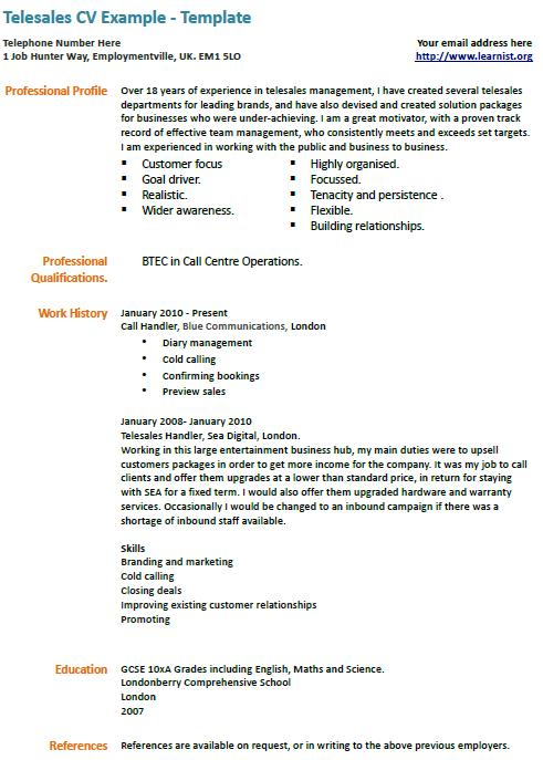 Professional Profile  Example Cv