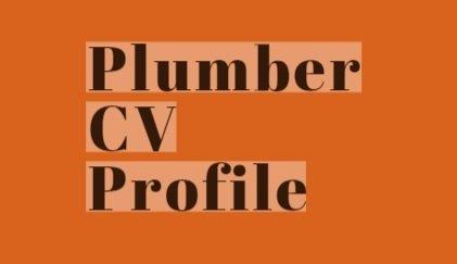 Plumber cv profile example
