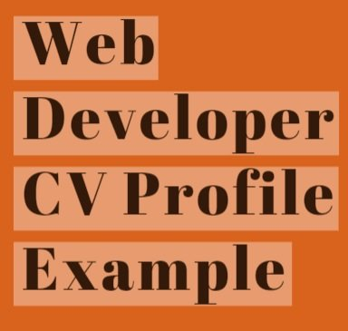 Web Developer CV Profile Example